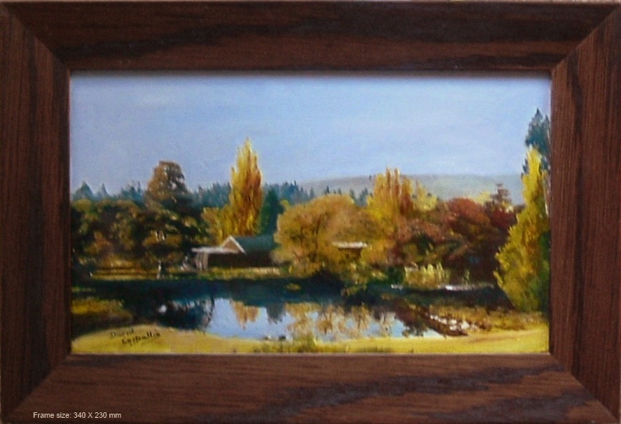 Central Otago - Scene Near Clyde